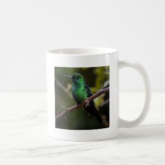 Green hummingbird Costa Rica Coffee Mug