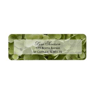Green Hydrangea Flower Return Address