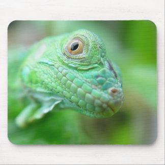 Green Iguana Lizard Reptile On Leaf Mousepad