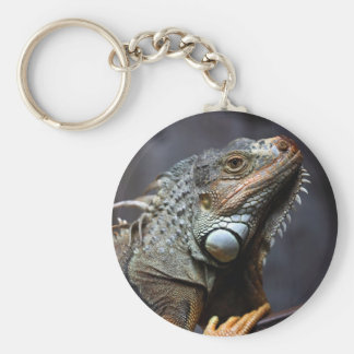 Green iguana portrait key ring