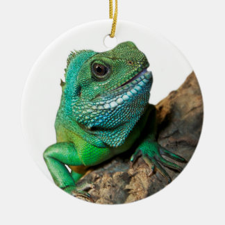 Green iguana round ceramic decoration