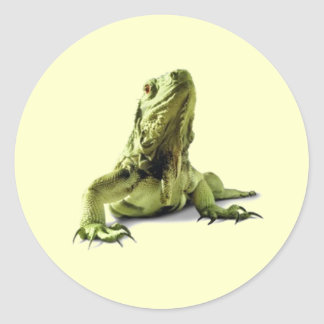 Green Iguana Stickers