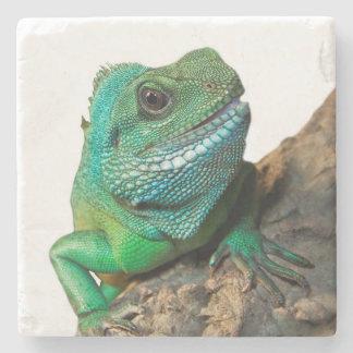 Green iguana stone beverage coaster