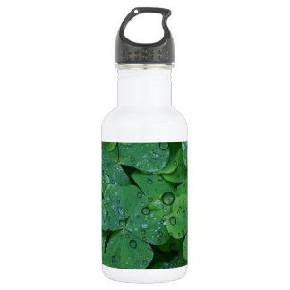 Green Irish Clover 532 Ml Water Bottle
