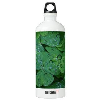 Green Irish Clover Water Bottle