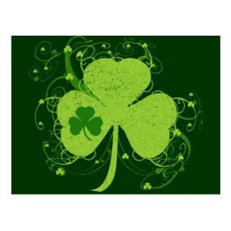 Green Irish Shamrock Postcard