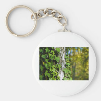 green ivy basic round button key ring