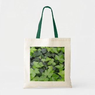 Green Ivy Botanical Print