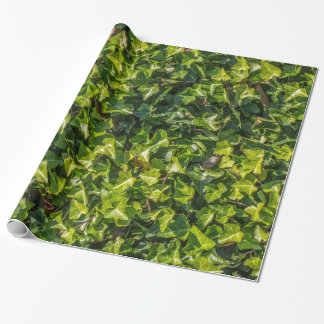 Green Ivy Wrapping Paper