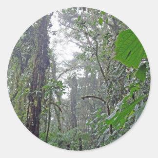 green jungle in costa rica round stickers
