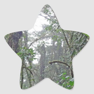 green jungle in costa rica star stickers