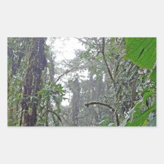 green jungle in costa rica rectangular sticker