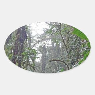 green jungle in costa rica oval stickers