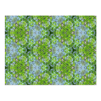 Green Kaleidoscope 2 Postcard