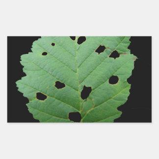 Green Leaf Black Background Rectangular Sticker