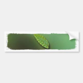 Green Leaf Blurred Background; No Greeting Bumper Sticker