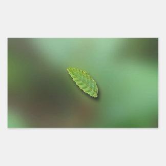 Green Leaf Blurred Background; No Greeting Rectangular Sticker