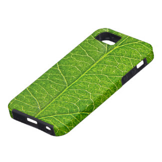 green leaf case for the iPhone 5