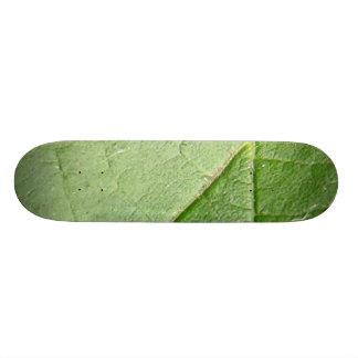Green Leaf Closeup Skate Deck