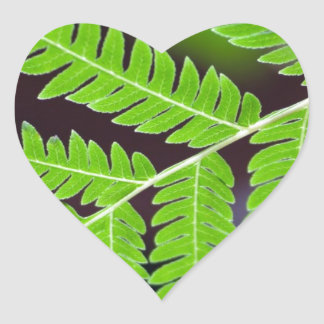 Green Leaf Closeup Heart Stickers
