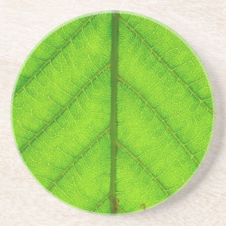 Green Leaf Coaster
