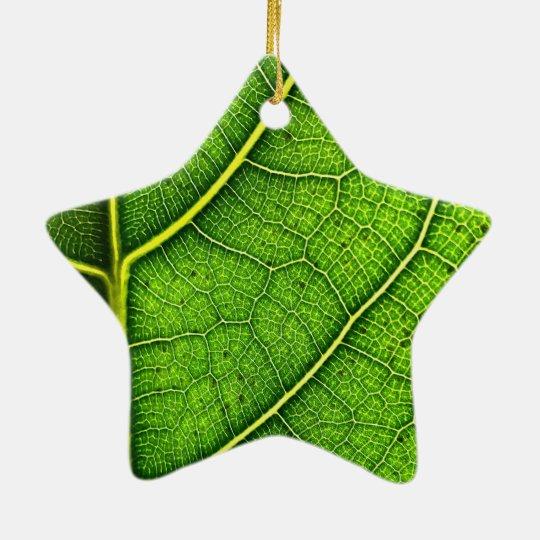 Green Leaf Dble-Sided Star Ornament