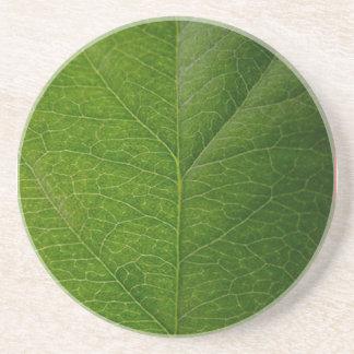 Green Leaf Drink Coaster