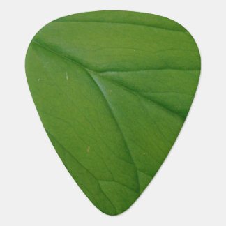 Green Leaf Guitar Pick