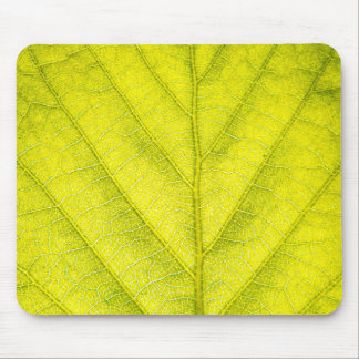 Green Leaf Macro Mouse Mat