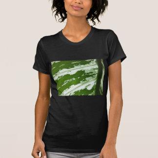 Green leaf macro shot under natura sunlight. tee shirt