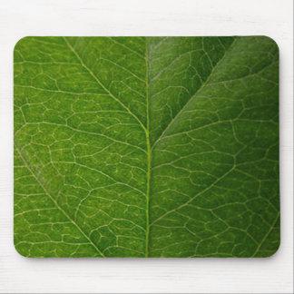 Green Leaf Mouse Mat