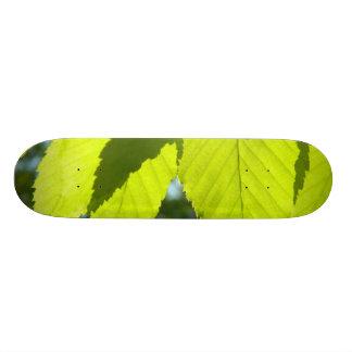 Green Leaf Shadows Skate Deck