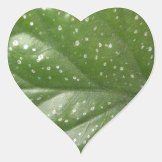 Greenleaf Heart Sticker