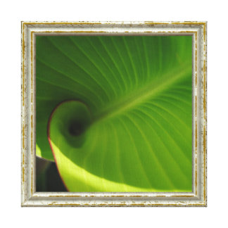 Green Leaf Swirl Canvas Print