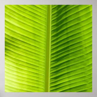 Green Leaf texture Art poster