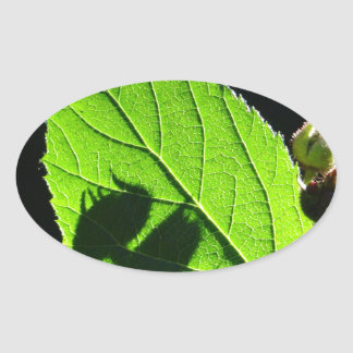 Green leaf with cool shadow oval sticker