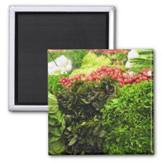 green leafy vegetable bin square magnet