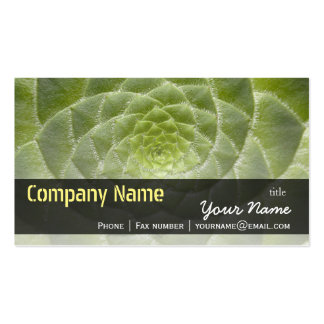 Green Leaves Aeonium Tabuliforme Business Template Pack Of Standard Business Cards