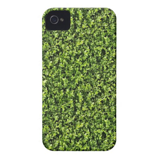 Green Leaves iPhone 4 Covers