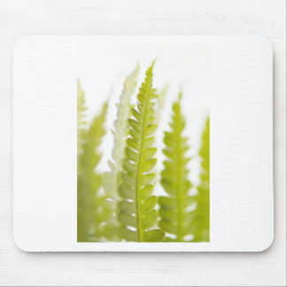 Green Leaves, Green Plant, Plants, Earth Mouse Mat
