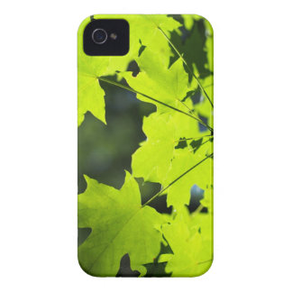 Green leaves in the woods Case-Mate iPhone 4 cases