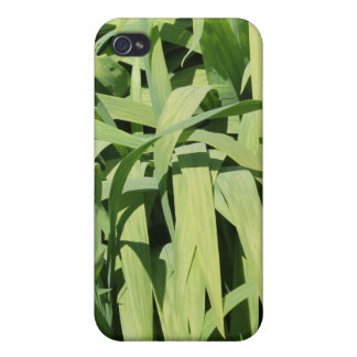 Green Leaves. iPhone 4/4S Cases