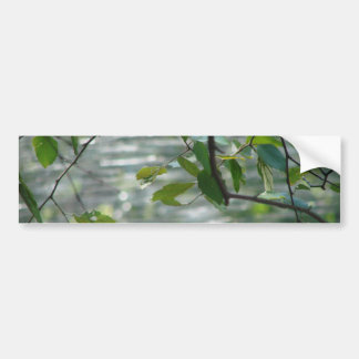 Green Leaves Of Hope Bumper Sticker