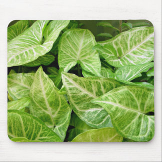 Green leaves with Cream patterns Mouse Pads