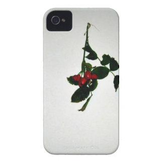 Green Leaves with Tiny Red Fruits Case-Mate iPhone 4 Cases