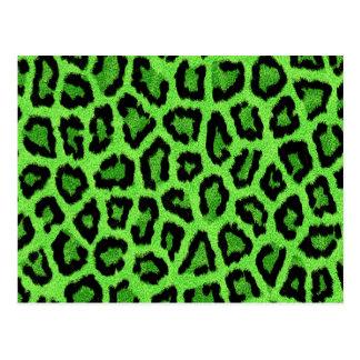 Green leopard skin print postcard