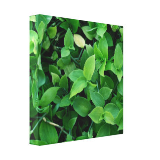 green linen cloth texture leaves gallery wrap canvas