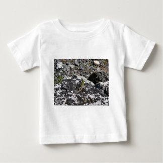 Green Lizard On A Rock. Baby T-Shirt