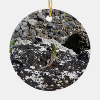 Green Lizard On A Rock. Christmas Ornament