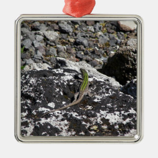 Green Lizard On A Rock. Silver-Colored Square Decoration